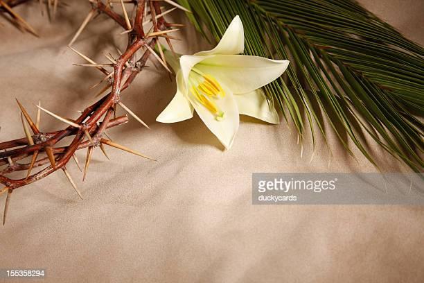 Palm buena viernes y los domingos, de pascua