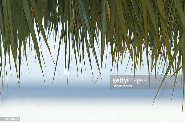 Palm Thatched Tiki Hut Roof with Blurred Beach and Ocean