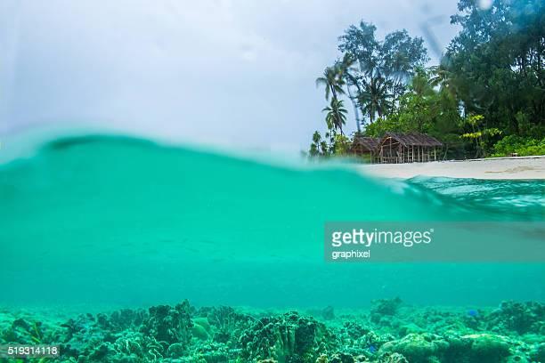 Palmen und Hütten am tropischen Strand