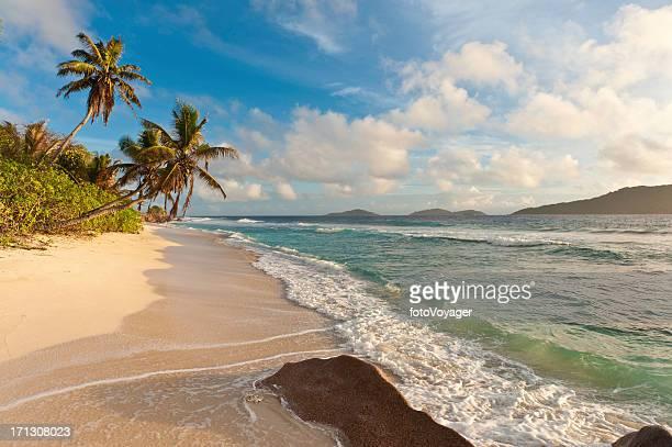Palm tree beach idyllischen tropischen Insel Strand