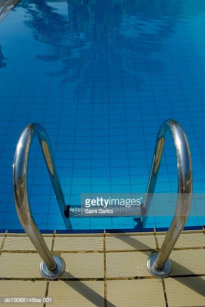 Palm tree reflected in pool, ladder in foreground
