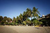 Palm trees and blue skies at Kantiang Bay Ko Lanta