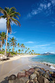 Palm trees and sand line the coastline of a caribbean island