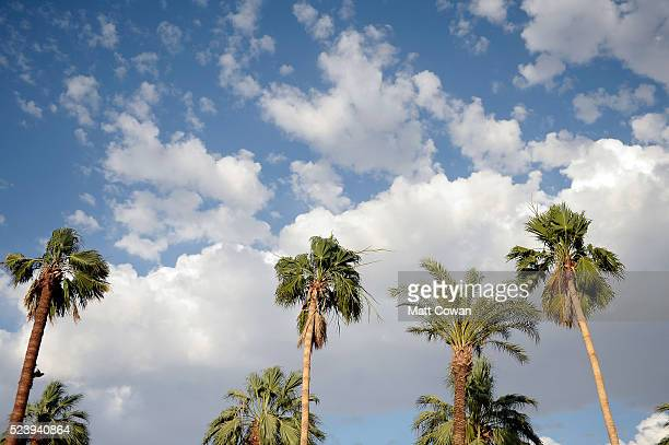 Palm trees and sky during day 3 of the 2016 Coachella Valley Music Arts Festival Weekend 2 at the Empire Polo Club on April 24 2016 in Indio...