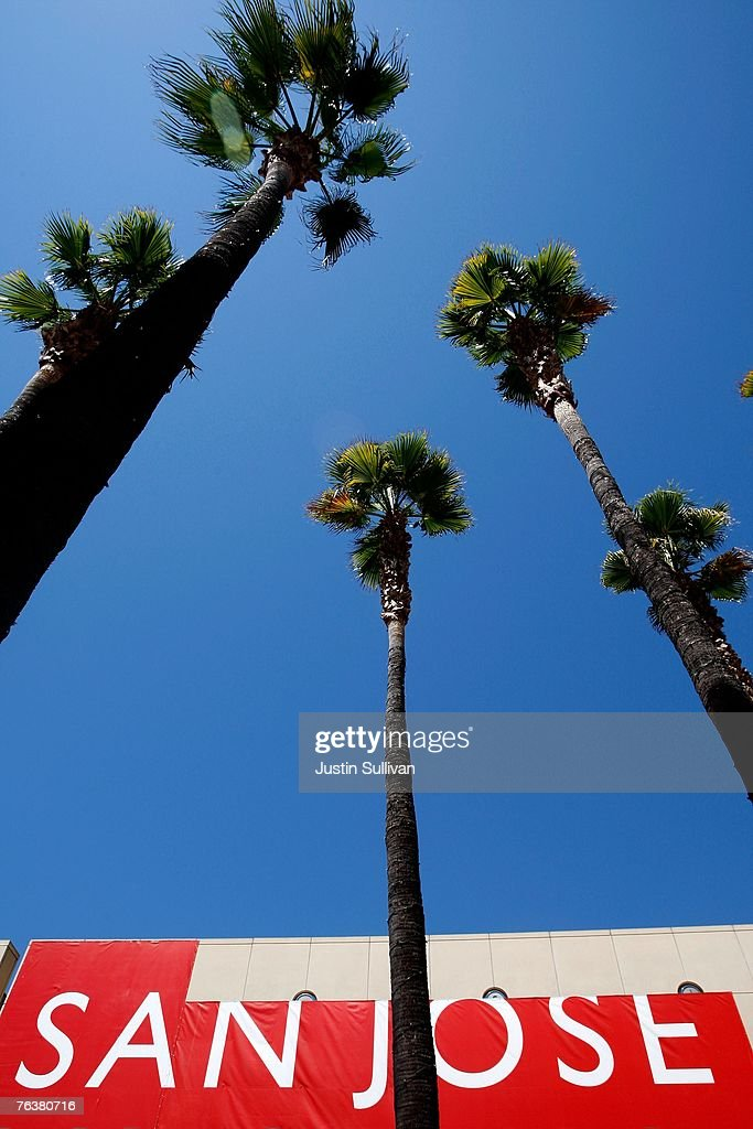 Palm trees are seen in front of a sign at the San Jose Museum of Modern Art August 29 2007 in downtown San Jose California The US Census Bureau...
