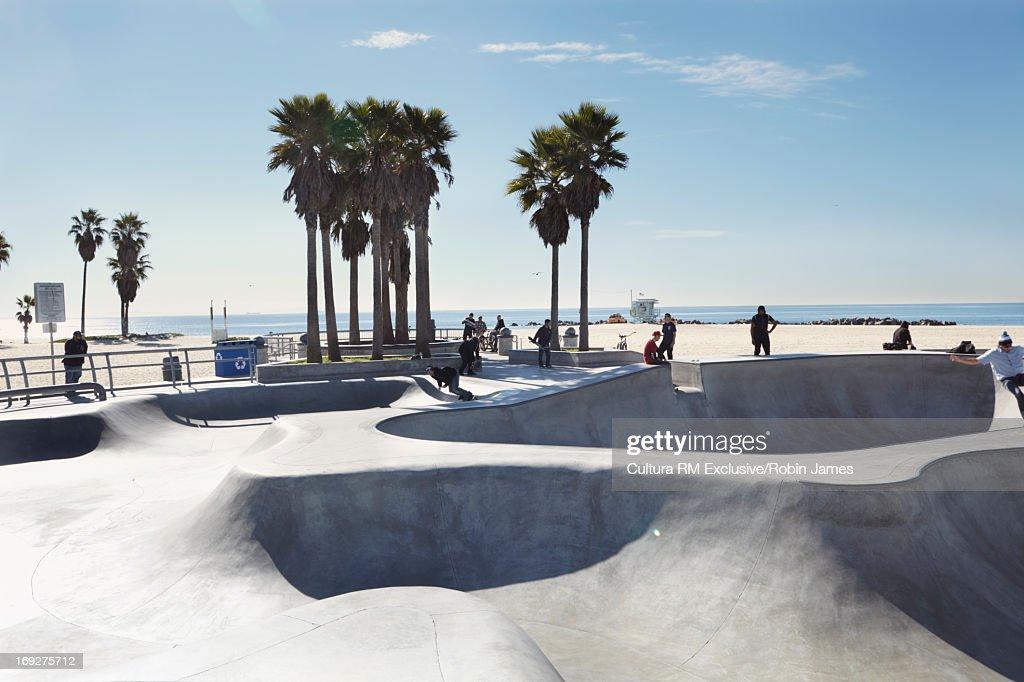 Palm trees at skate park on beach