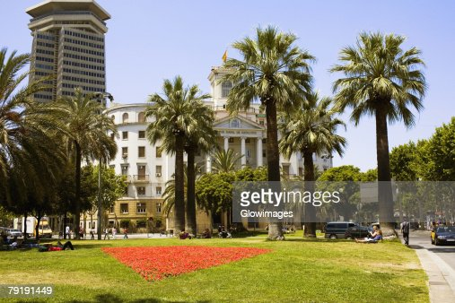Palm trees in front of a building, Barcelona, Spain : Foto de stock