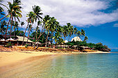 Palm trees in front of the Shangri-la Fijian Resort, Viti Levu island, Fiji