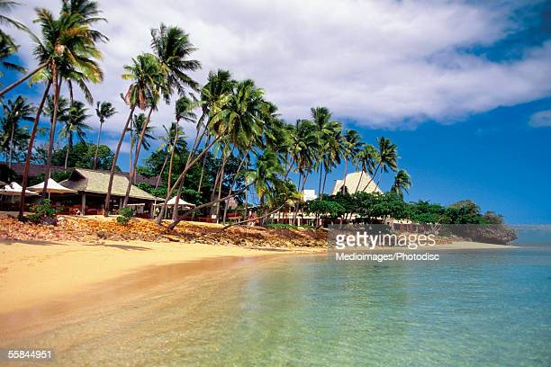 Palm trees in front of the Shangri-la Fijian Resort, Viti Levu island, Fiji