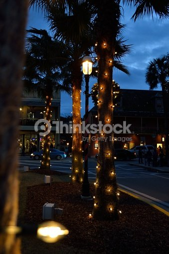 palm trees lit up for christmas stock photo thinkstock