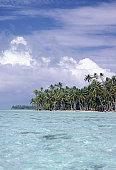 Palm trees on coast, Bora Bora