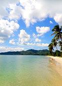 Palm trees on the beach of the Adaman sea. Thailand