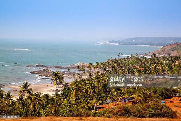 Palm Trees on the beach Vagator Bardez North Goa Goa India