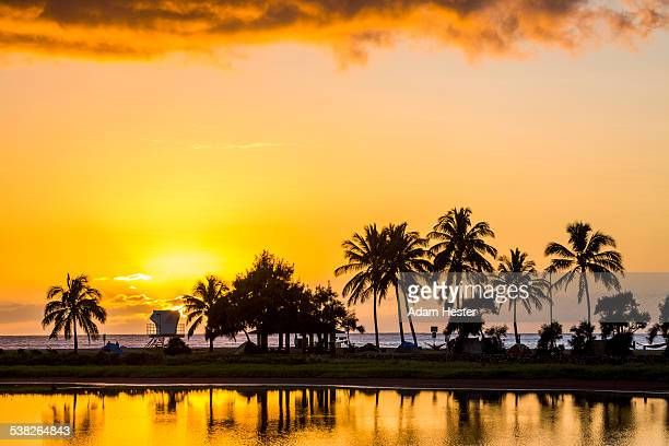 Palm trees over a small lake near the ocean