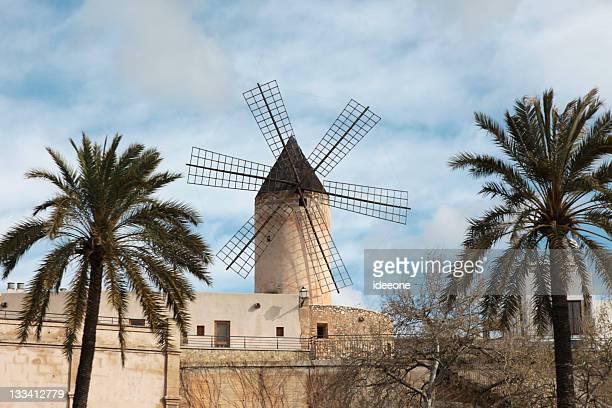 Palma Windmühle