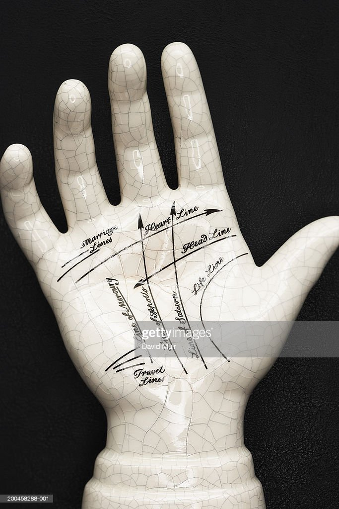 Palmistry model, against black background, close-up : Stock Photo
