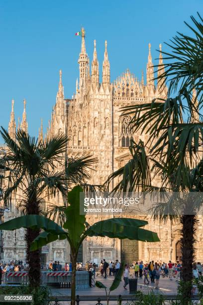 Palms and bananas tree in Piazza Duomo cathedral of Milan