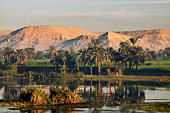 Palms and hills along River Nile.