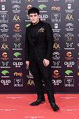 ESP: Goya Cinema Awards 2020 - Red Carpet