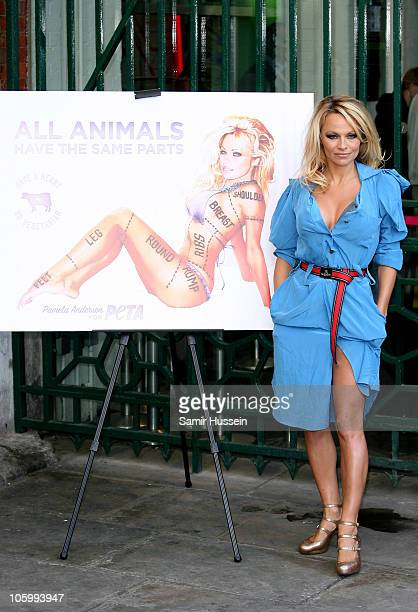 Pamela Anderson attends a photocall for PETA at the London Transport Museum on October 24 2010 in London England