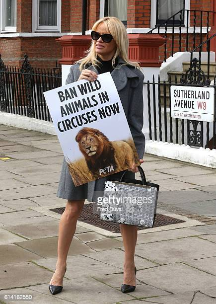 Pamela Anderson attends a photocall that urges Theresa May to ban wild animal circuses in the UK on October 12 2016 in London England