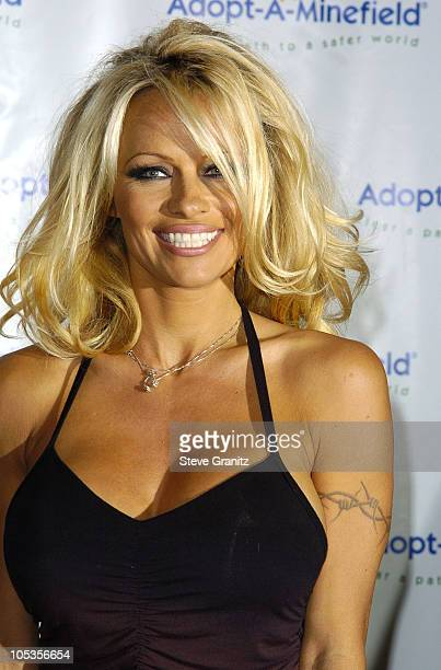 Pamela Anderson during 4th Annual AdoptAMinefield Gala at Century Plaza Hotel in Century City California United States