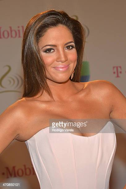 Pamela Silva Conde attends Premio Lo Nuestro a la Musica Latina 2014 at American Airlines Arena on February 20 2014 in Miami Florida