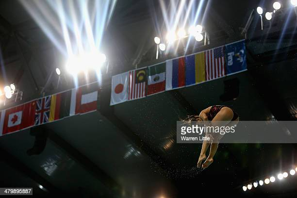 Pamela Ware of Canada dives in the Women's 3m Springboard finals during day two of the FINA/NVA Diving World Series 2014 at the Hamdan Sports Complex...