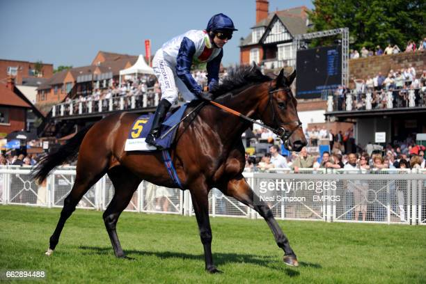 Pampas Cat ridden by Jimmy Fortune in the Bank Of America Chester Vase