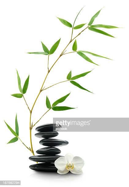 Pampered Balance