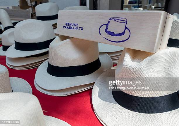 Panama Province of Panama Panama city Panama hats for sale in a local market in Casco Viejo on January 12 2014 in Panama City Panama