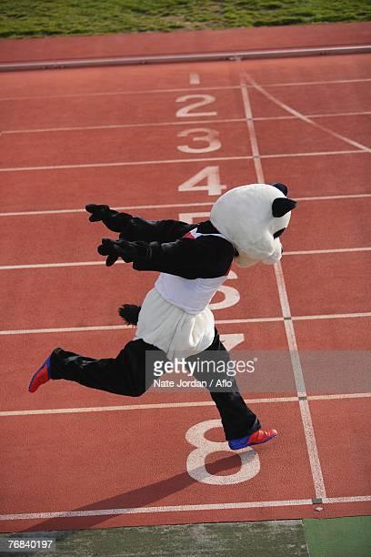 Panda Crosing the Finish Line
