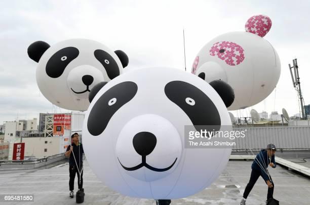 Panda shaped balloons are prepared at Matsuzakaya Department Store Ueno Branch a day after giant panda Shin Shin giving birth a new cub at Ueno Zoo...