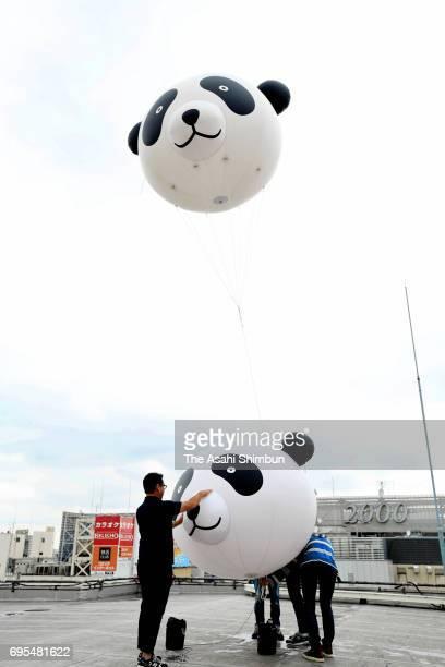 Panda shaped balloons are seen at Matsuzakaya Department Store Ueno Branch a day after giant panda Shin Shin giving birth a new cub at Ueno Zoo on...