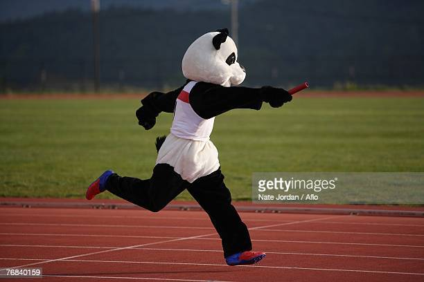 Panda Sprinting in a Relay