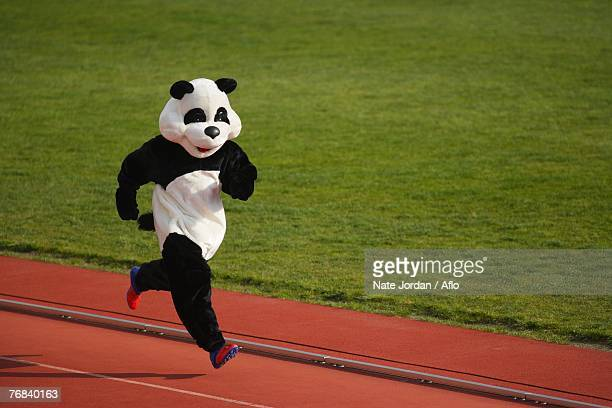 Panda Sprinting on a Track