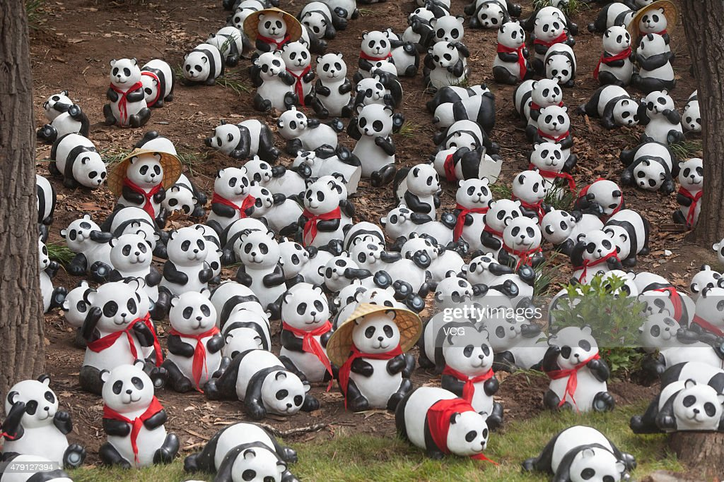 Panda House pandas make debut in jilin siberian tiger park photos and images