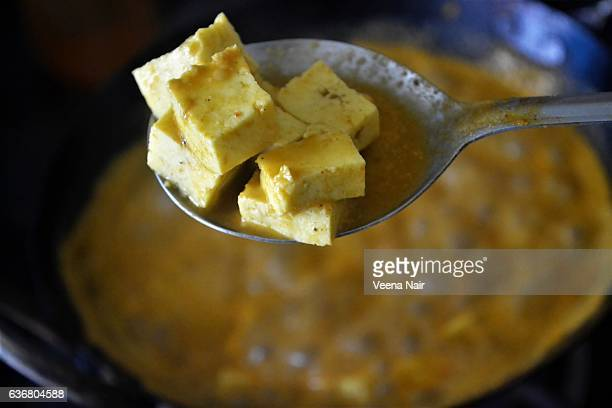 Paneer curry-Indian dish