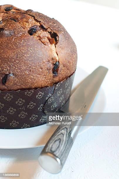Panettone Italian Christmas cake