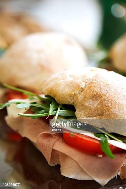 Panini Turkey Tomato and Cheese Sandwich