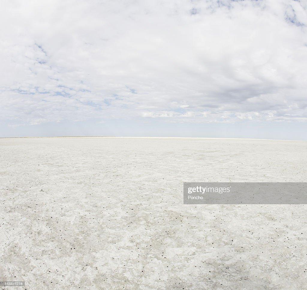 Panorama of a Salt Lake
