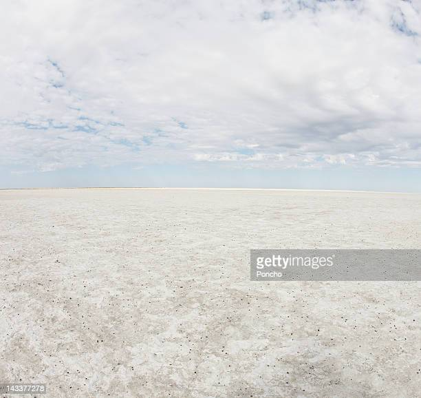 Panorama of a Salt Lake