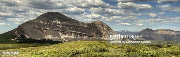 Panorama of Engineer Mountain