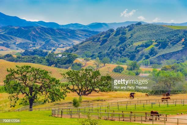 Panorama of Santa Ynez Mountains valley, Santa Barbara California (P)
