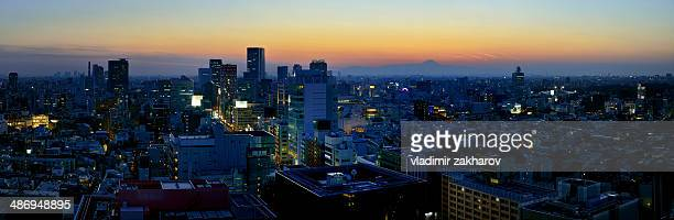 Panorama of Shibuya district of Tokyo at sunset