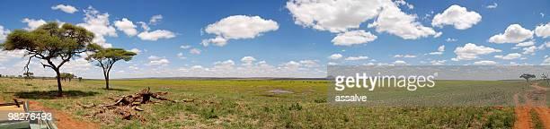 XXL panorama Tarangire National Park, Tanzania, East Africa