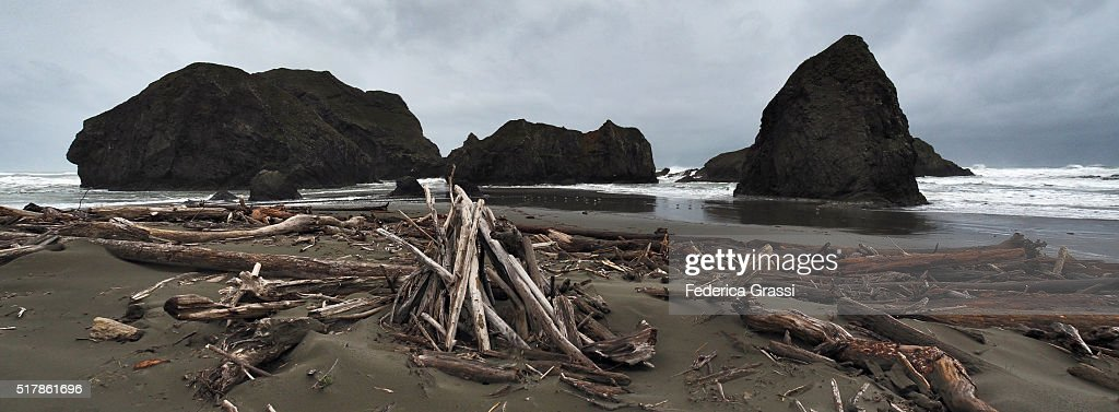 Panorama View, Driftwood at Meyers Beach South, Oregon