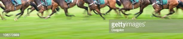 のパノラマに広がる眺めをもつ馬のレース