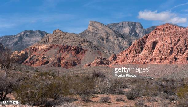 Panorama-Red Rock Canyon Natl Conservation Area