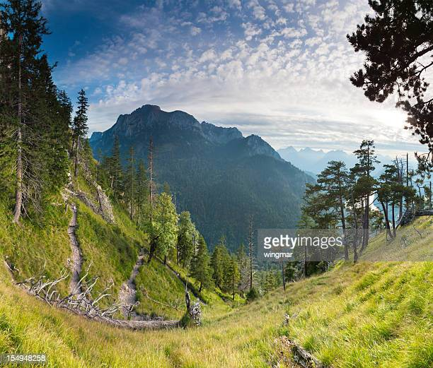 Panorama-Blick auf die Berge in Bayern, Deutschland, Alpen